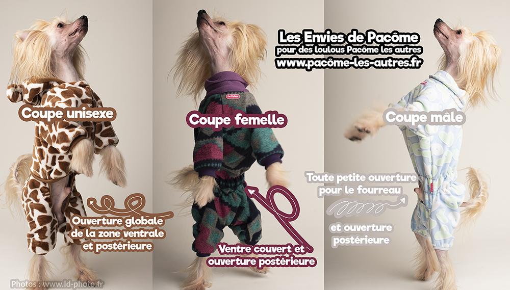 Les différentes coupes de vêtements pour chien selon le sexe